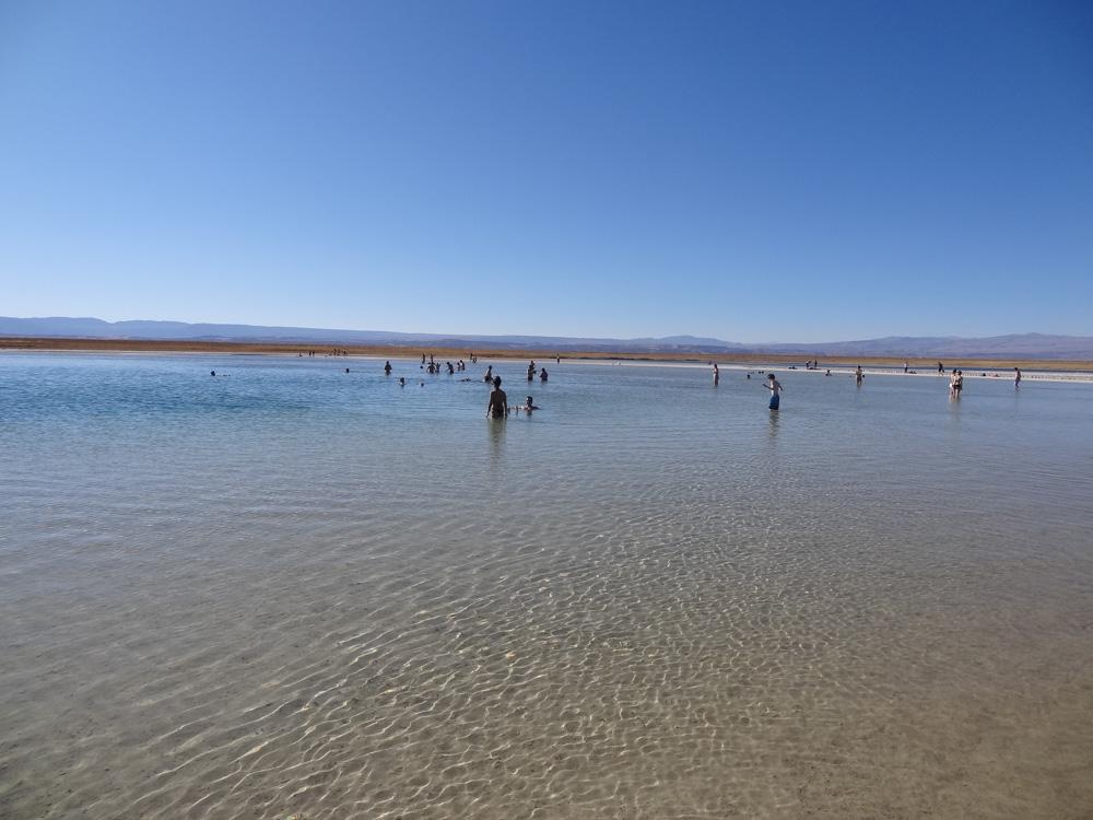 Laguna Cejar (Foto: Sandra Scigliano)