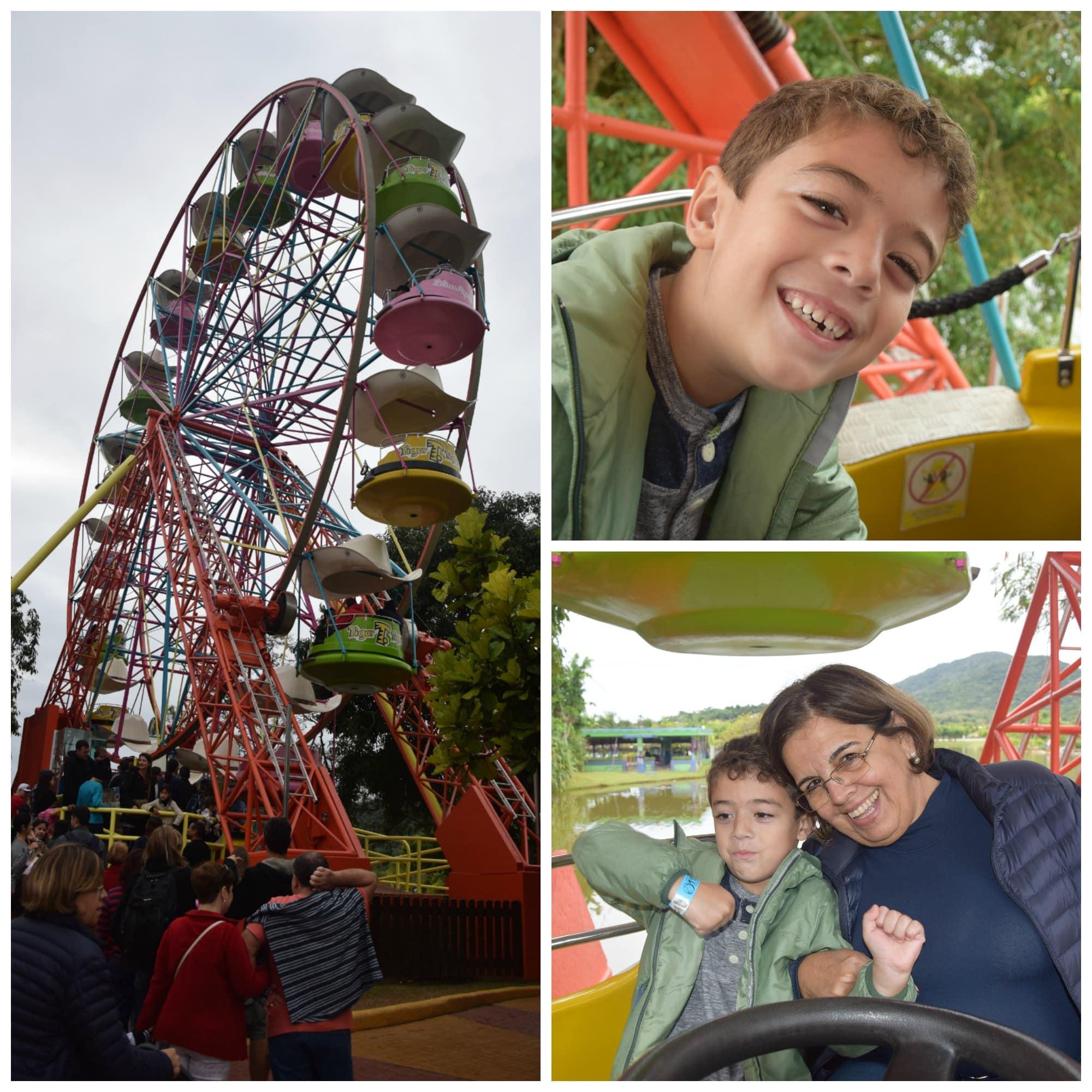 A Roda Gigante faz sucesso com as crianças no Beto Carrero! Veja o que mais tem para fazer no parque nesse post!
